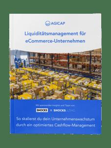 Cover-eBook-Liquiditätsmanagement im eCommerce