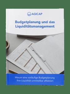 eBook-Budgetplanung
